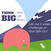 Think Big Get Small Challenge